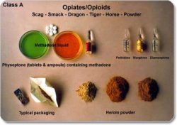list of opiates